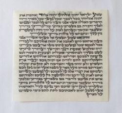 Pergaminho para Mezuza Kosher com 12 cm